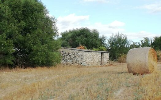 Terreno en venta en Lloret de Vistalegre de 6000 m2 - Inmobiliaria en Mallorca